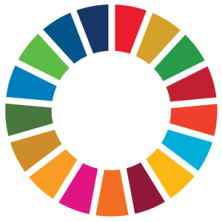 Decorative image of the SDG Goal colors