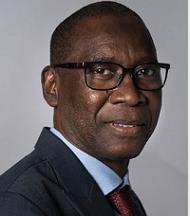 Его Превосходительство г-н Шейх Нианг (Сенегал)