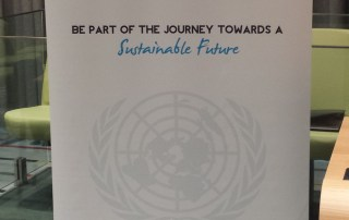 High-level Political Forum on Sustainable Development.