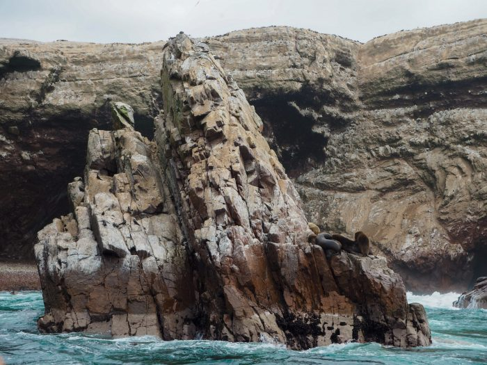 Islas Ballestas viaggio in Perù