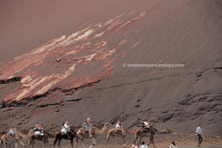 Camel ride ai piedi del vulcano, Parco del Timanfaya, Lanzarote.