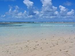 Bois jolan spiaggia guadalupa