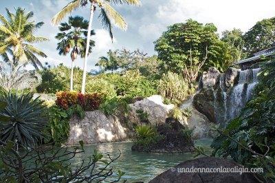 Giardino botanico in Guadalupa