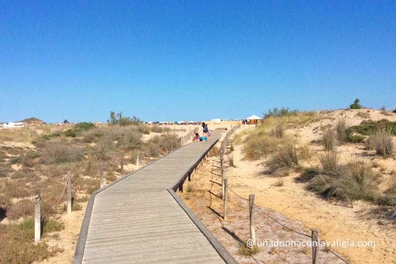 le dune di Su Giudeu