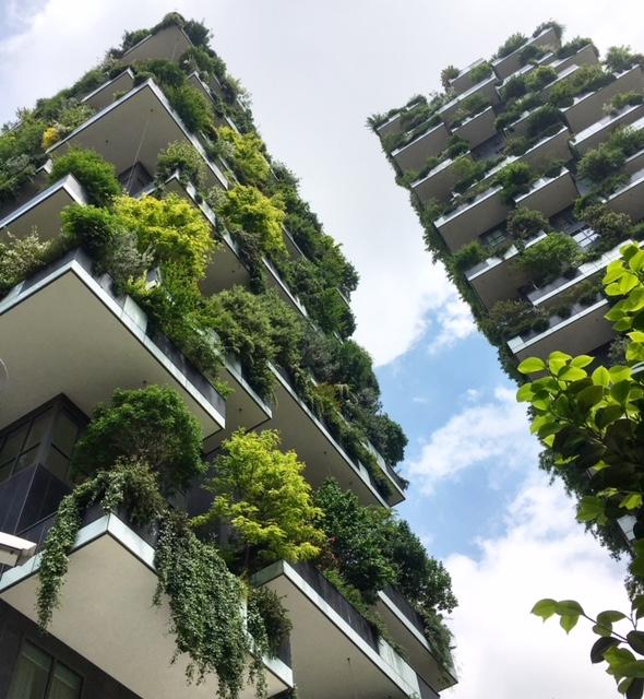 Milano bosco verticale