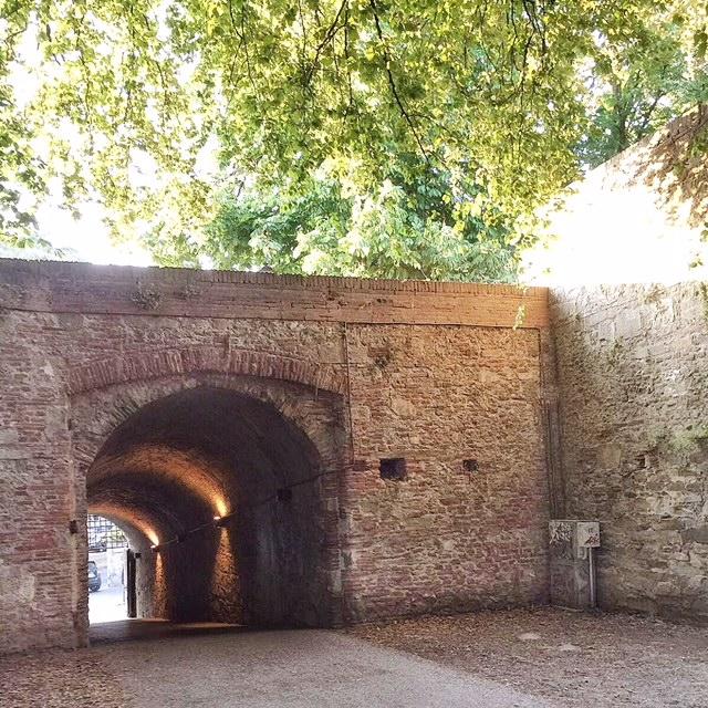 Scorcio mura Lucca