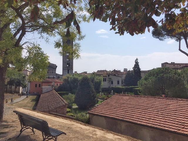 Vista mura Lucca