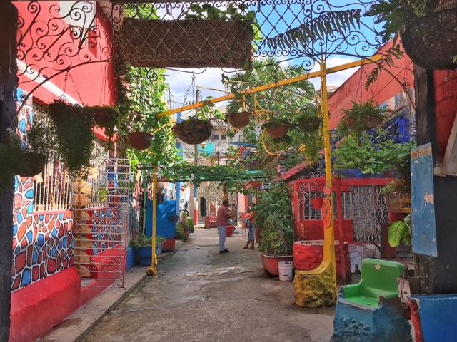 Colori Callejon de Hamel Havana