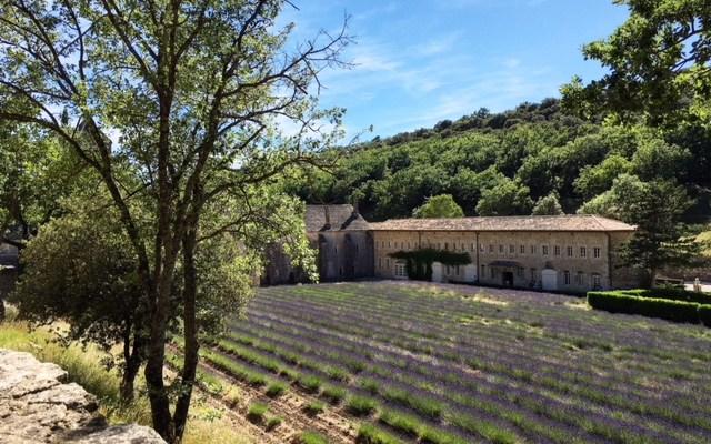 Provenza incantata: l'Abbazia di Senanque, Gordes e Roussillon
