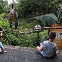 Dinopark, dove l' era dei dinosauri non è ancora finita!