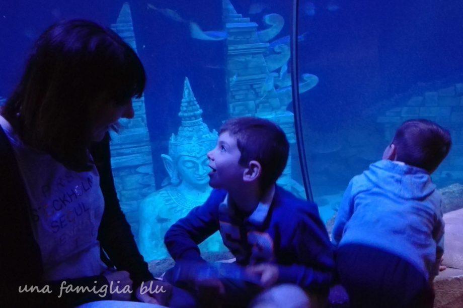 sea life di jesolo - una famiglia blu