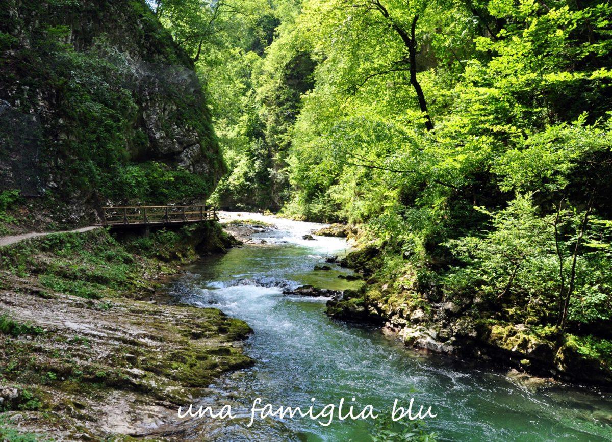 Gola di Vintgar con i bambini, la Slovenia che piace a noi!