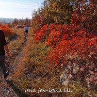 Passeggiate con i bambini in Friuli