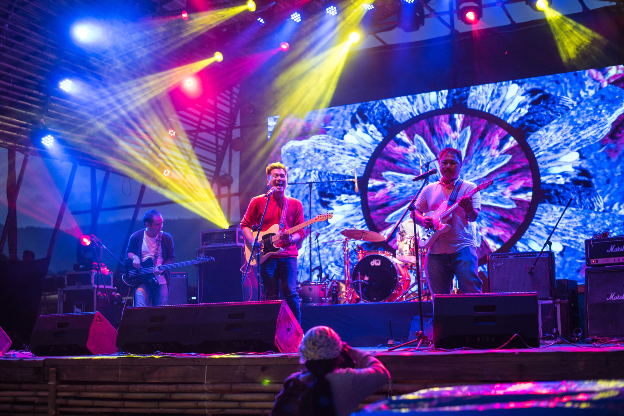What kinds of music and bands play at Ziro Music Festival?