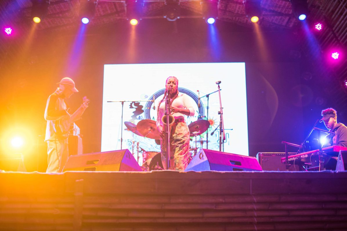 Why you must witness Ziro Music Festival?