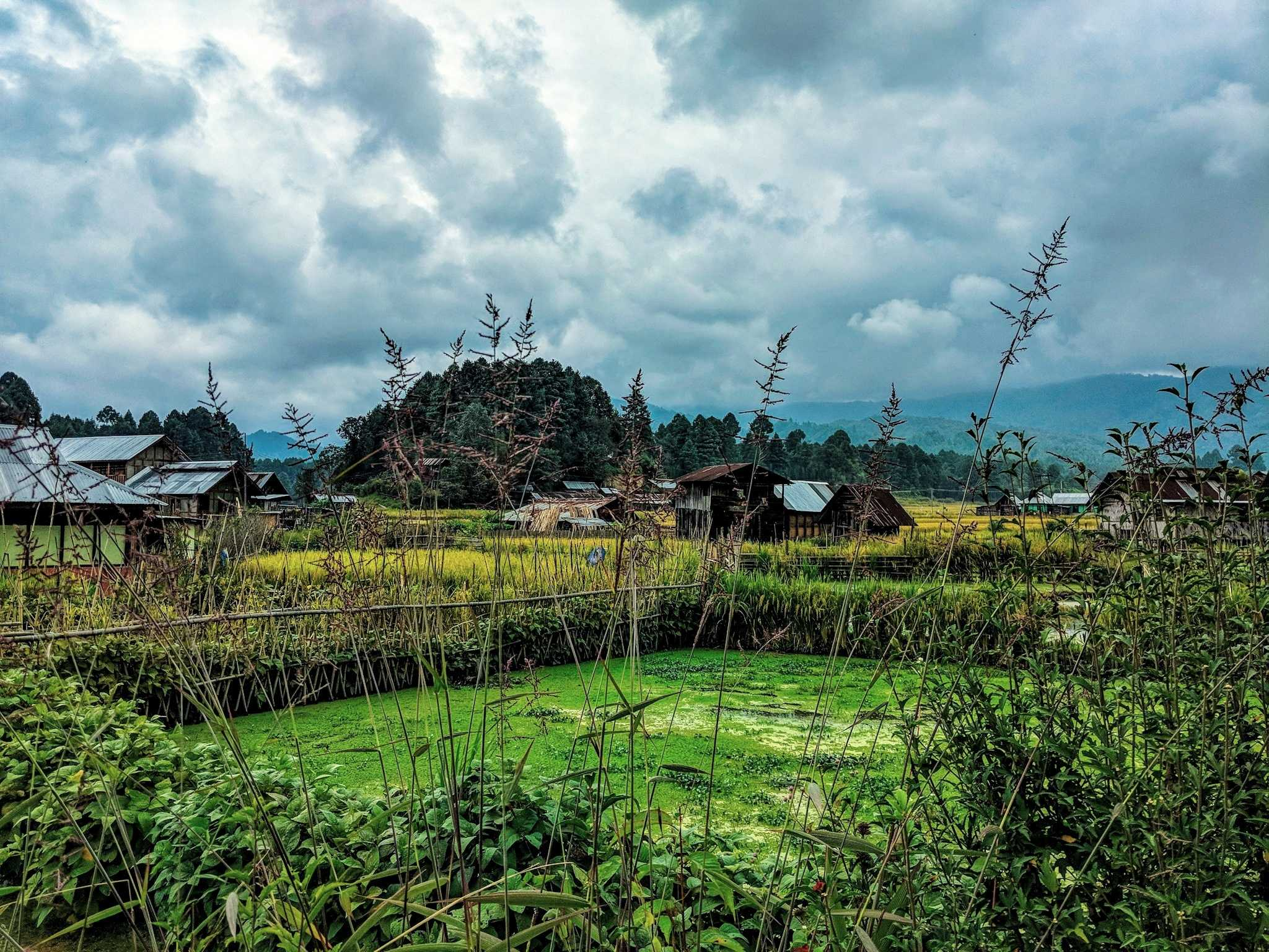 What do farm houses in Northeast India look like?