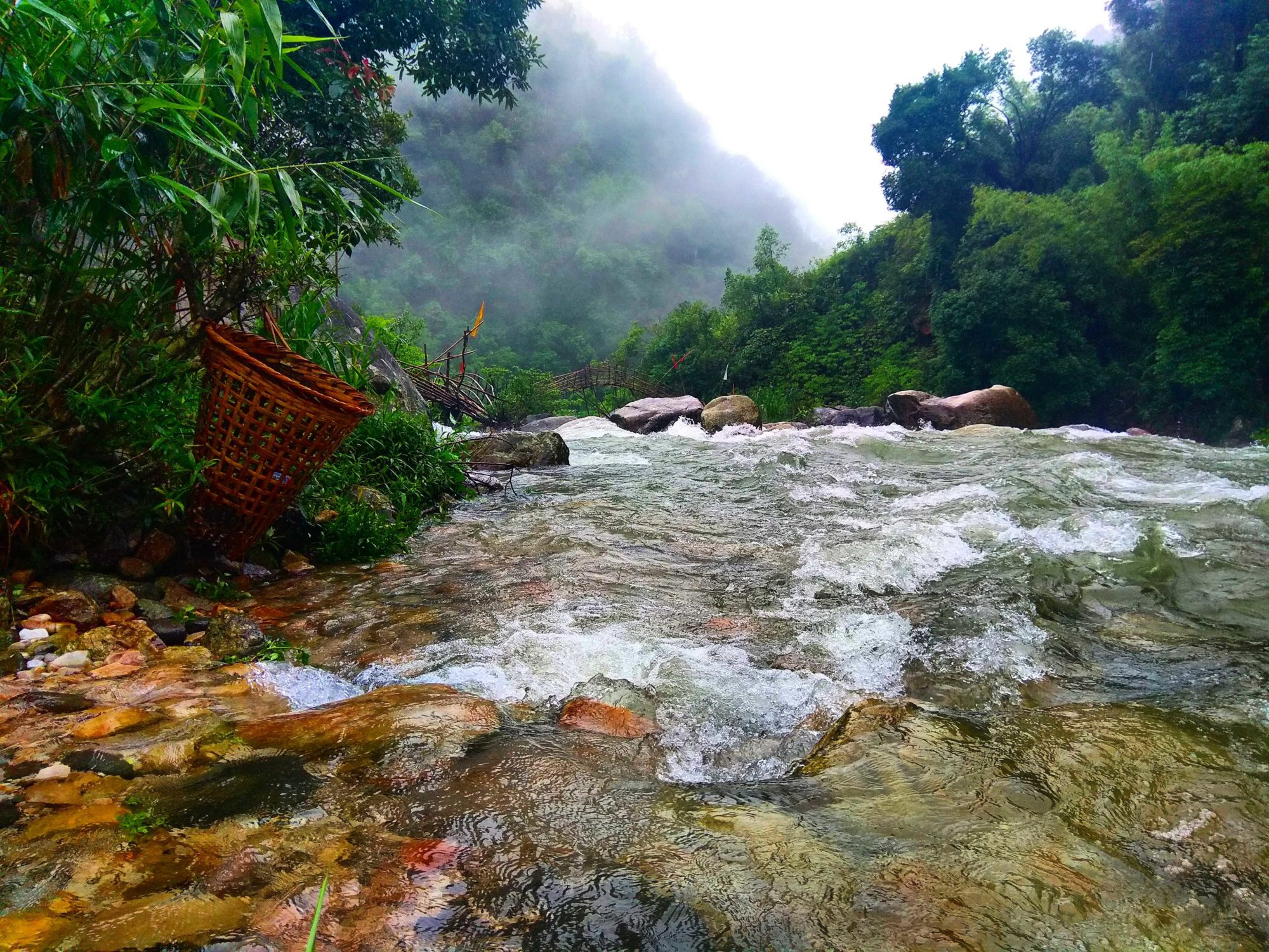How does northeast India promote eco-tourism?