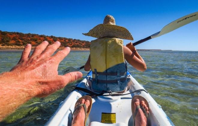 Kayak à Monkey Mia