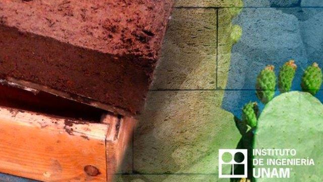 Eco-ladrillos-mitigar-problemas-ambientales-UNAMGlobal
