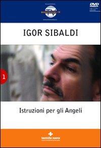Istruzioni per gli angeli - Igor Sibaldi (spiritualità)