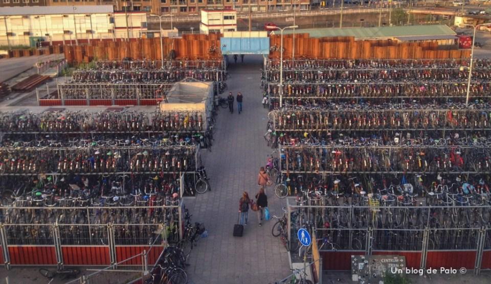A los holandeses les gustan las bicicletas