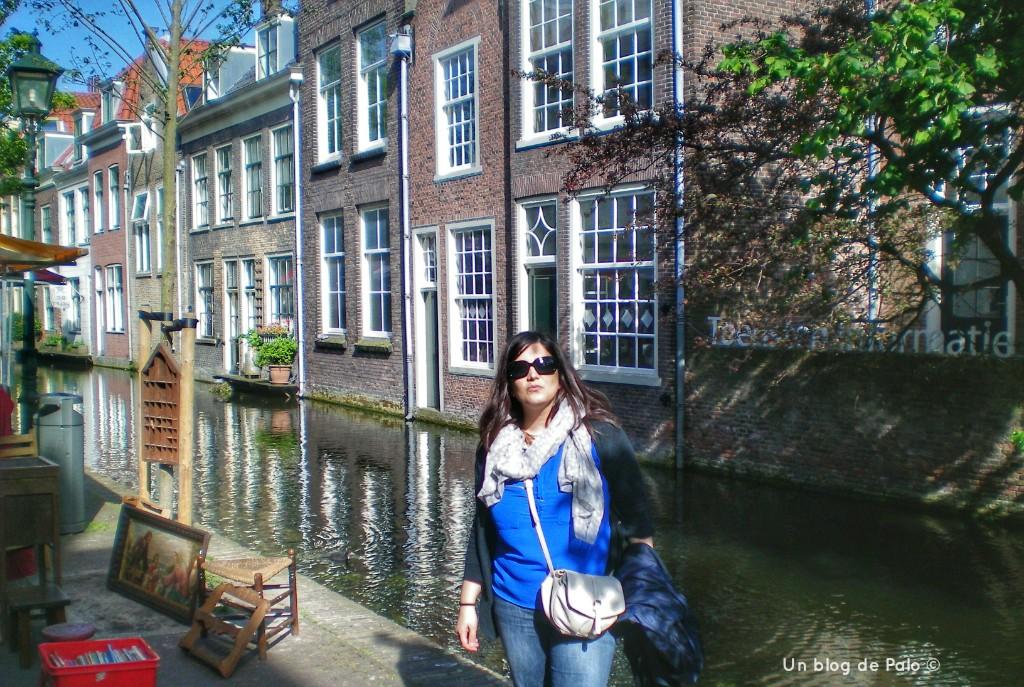 Palo en Delft y los canales