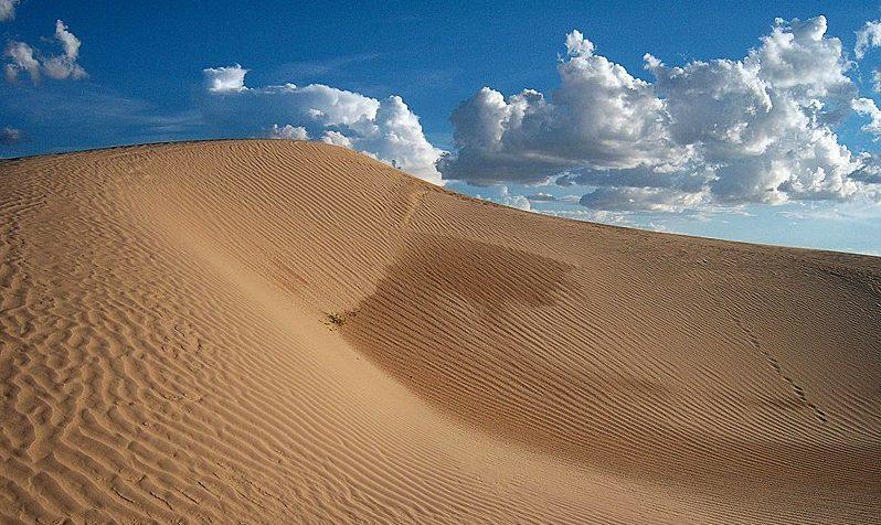 Desierto de Samalayuca