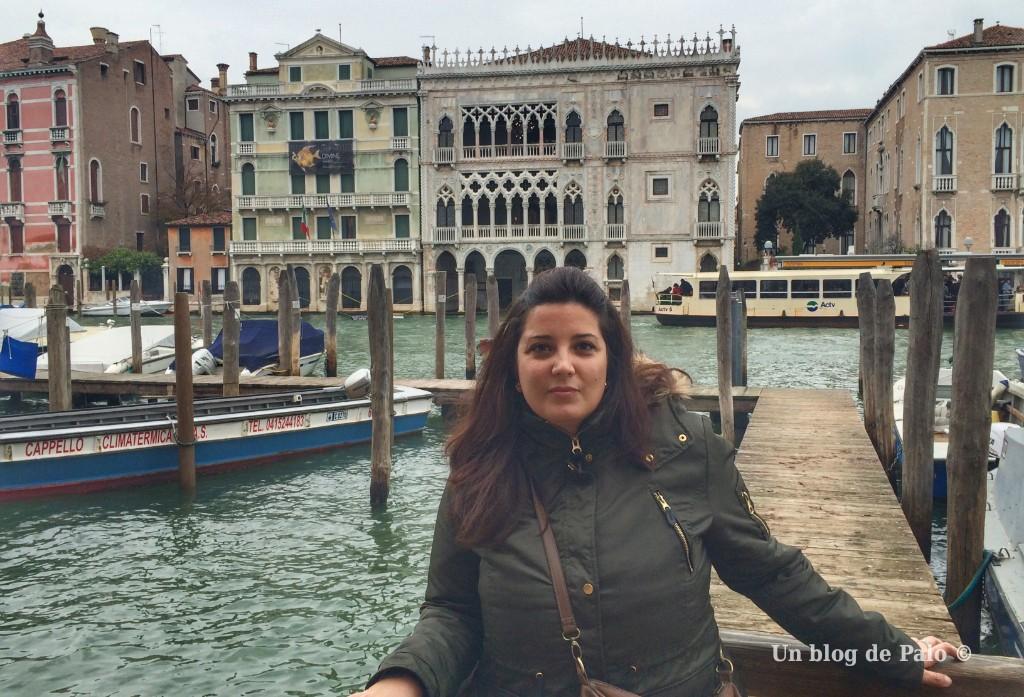 Paloma en el Canal Grande de Venecia
