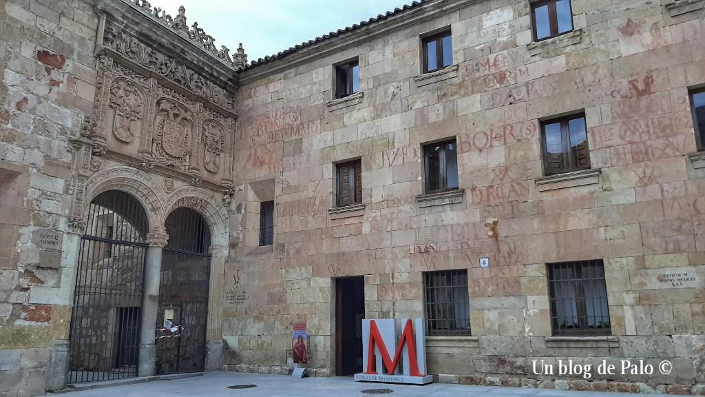 Museo Bellas Artes de Salamanca