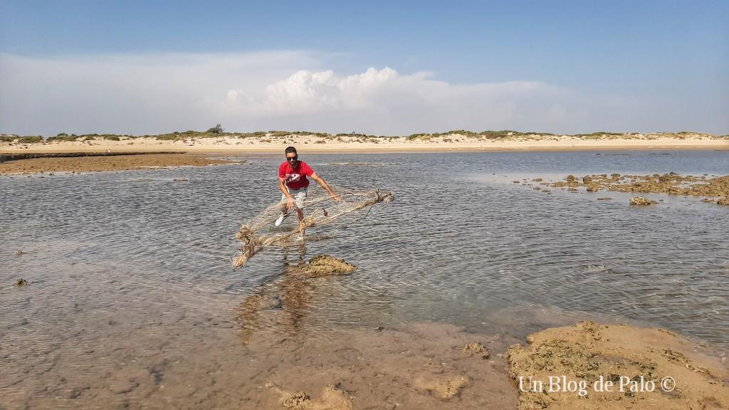 Echando la red en los corrales de pesca