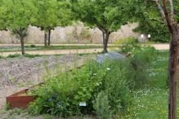 potager du château de la Roche-Guyon