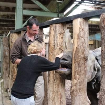 moi et le rhinoceros