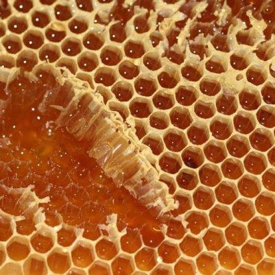Cire et miel