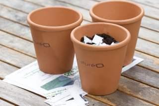 pots NatureO pour zero phyto