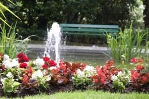 bassin jardin des plantes
