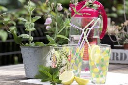 Infusion de fruits au jardin