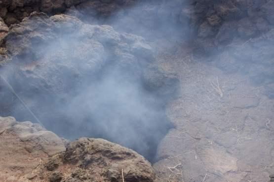 Branchage prenant feu dans le sol volcanique de Lanzarote