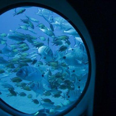 Lanzarote Submarine safaris