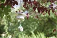 Mangeoires à oiseaux originales réalisées avec des tasses