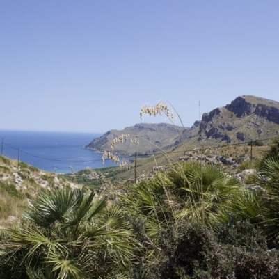 Vue sur la baie d'Alcùdia à Majorque.