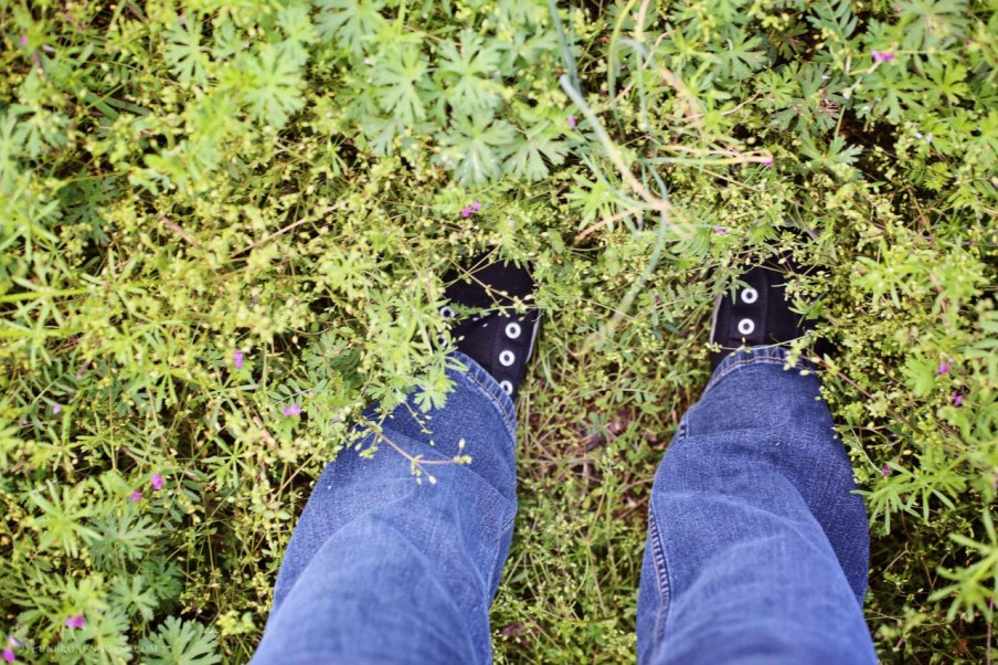 No shoelaces needed to enjoy moshing around some fresh spring greens.