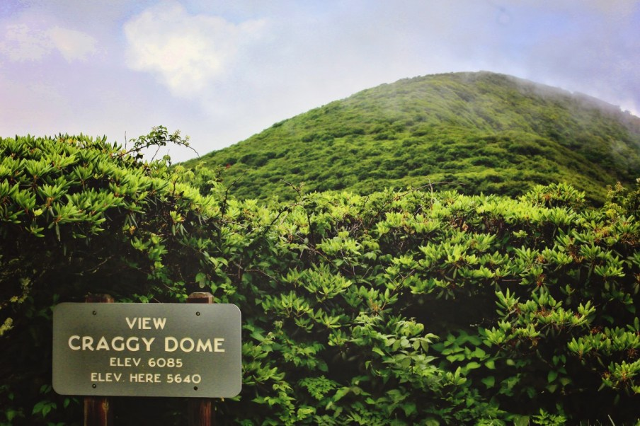 We reach the bottom of Craggy dome. Now to hike up!
