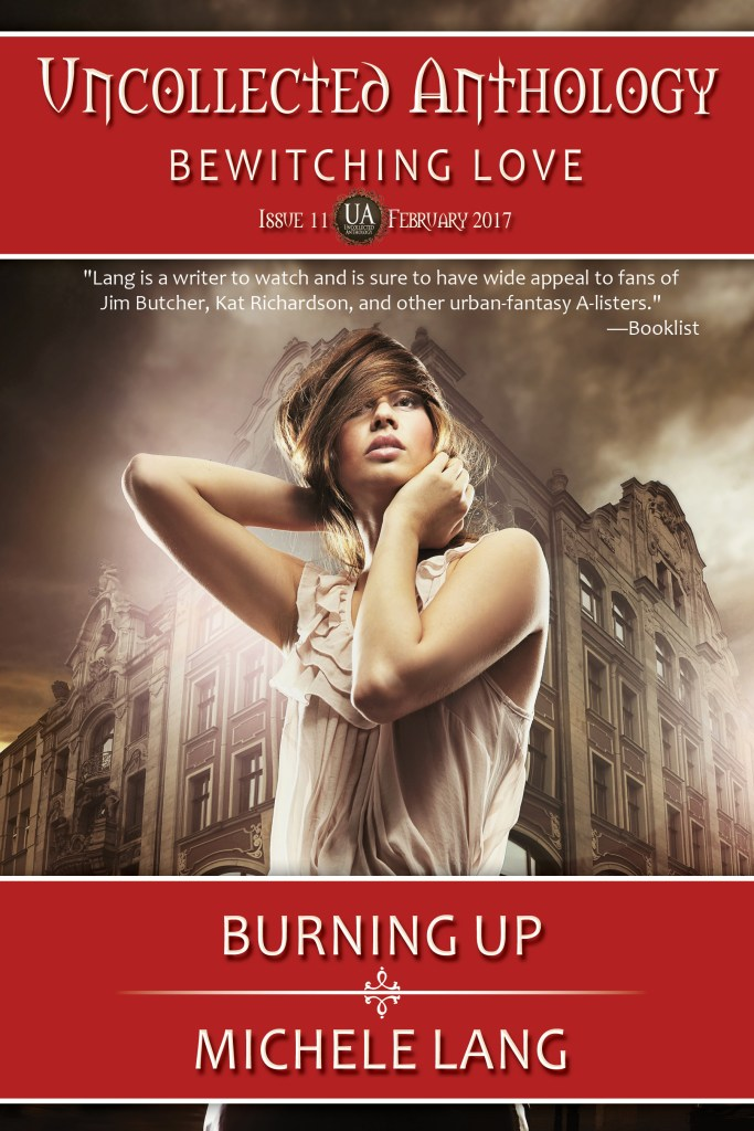 Book Cover: Burning Up