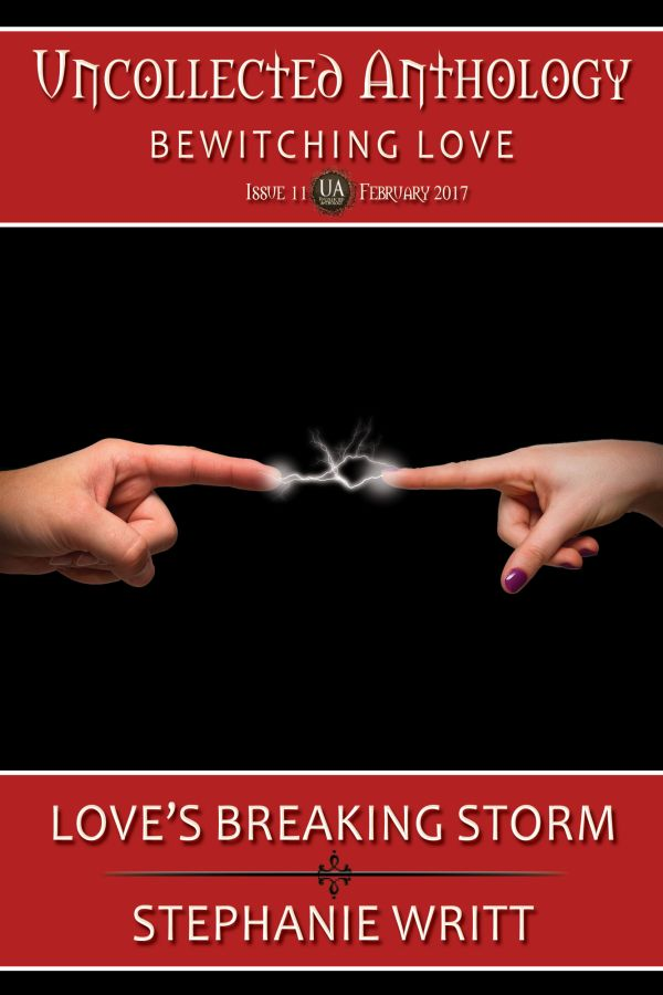 Book Cover: Love's Breaking Storm
