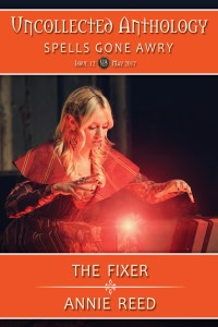 Book Cover: The Fixer