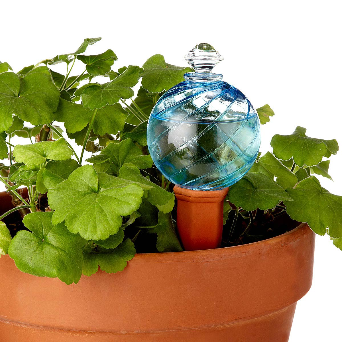 Watering Globe And Plant Nanny Stake