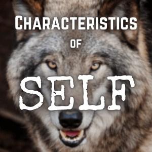 Characteristics of Self