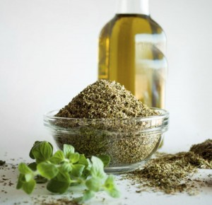 Antibiotics oregano oil