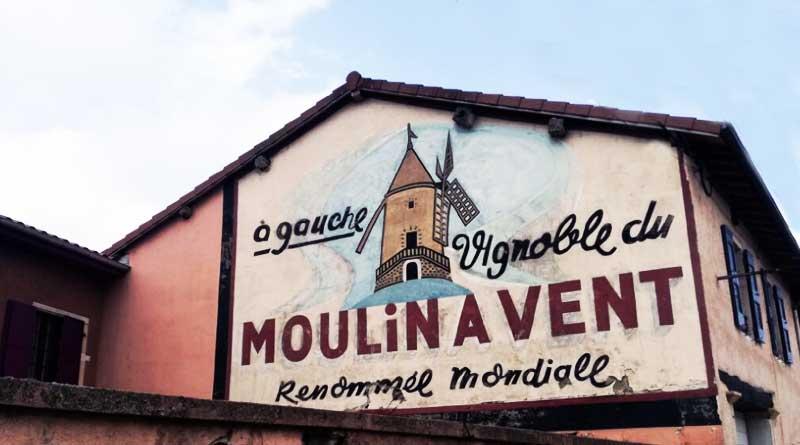 Beaujolais oltre il Nouveau: l'anima dei 10 cru a sud della Borgogna