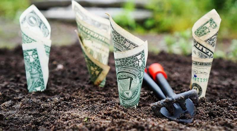 Finanza e vino: diavolo e acqua santa